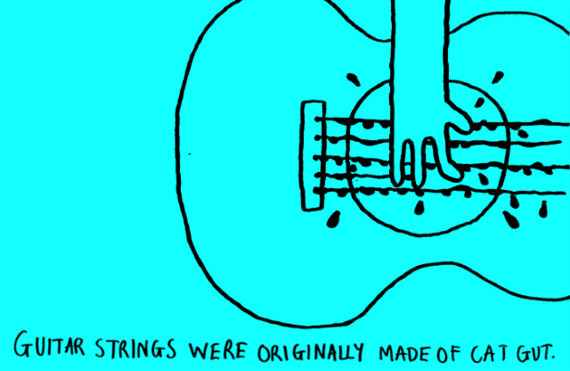 Guitar strings were originally made of cat gut.