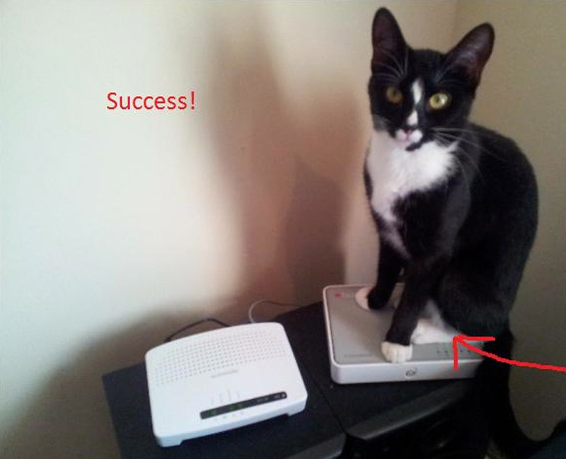 router-cat-be-2012-1.