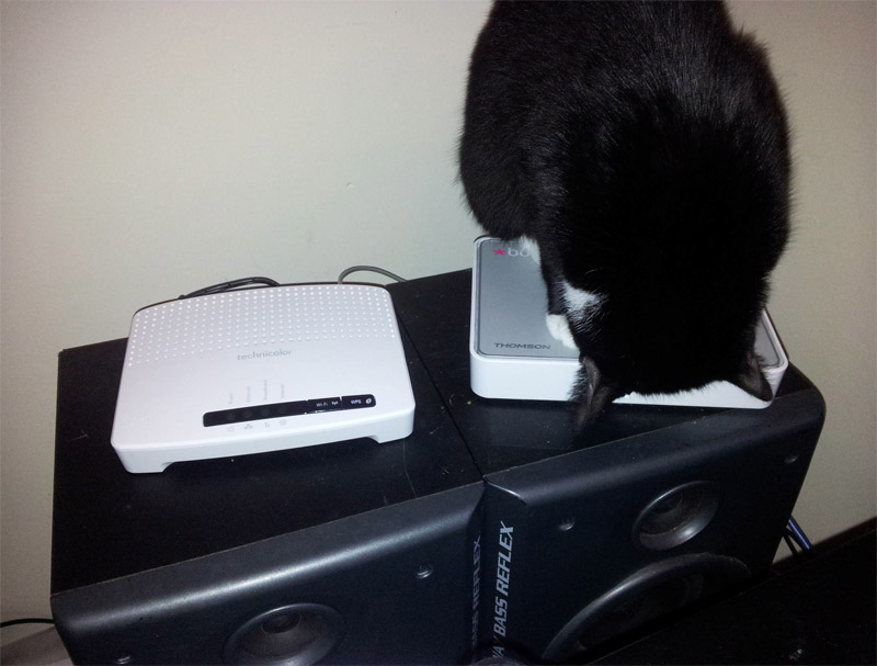 router-cat-be-2012-2.